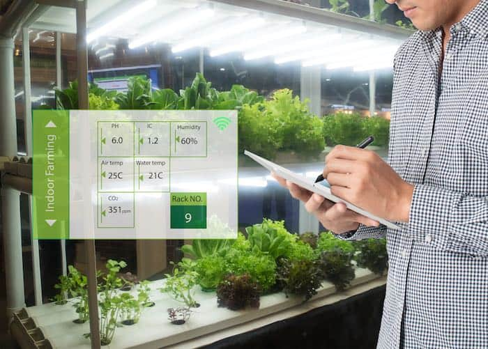 Vertical farms use technology to make efficient use of space and plants